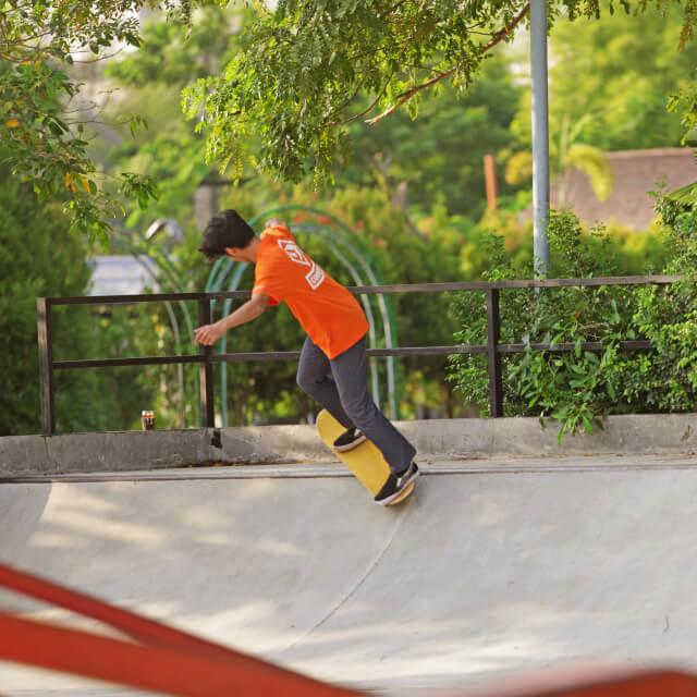 http://images.malkelapagading.com/album/6801//skate-3.jpg
