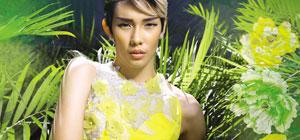 Fashionable Boulevard - Elegance & Prosperity