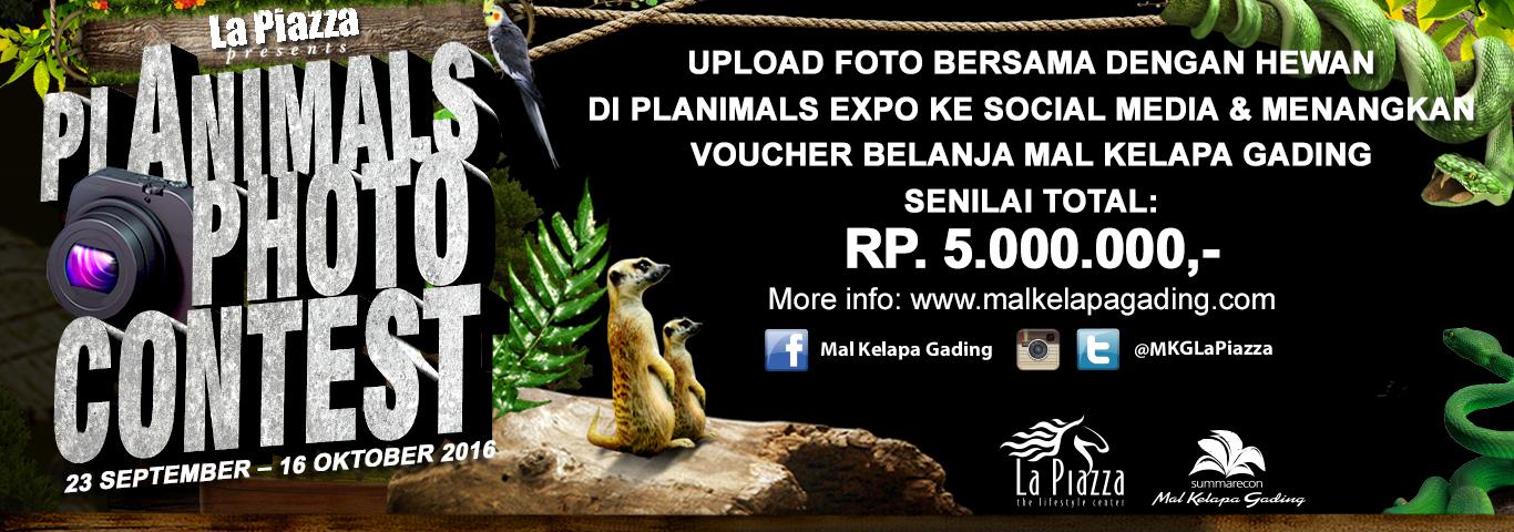 Planimals Photo Contest