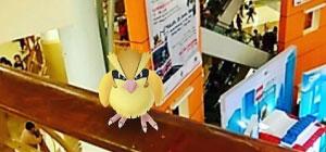 Ini dia Spot Pokestop dan Pokemon Gym di Mal Kelapa Gading