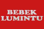 Logo Bebek Lumintu