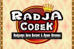 Logo Radja Cobek